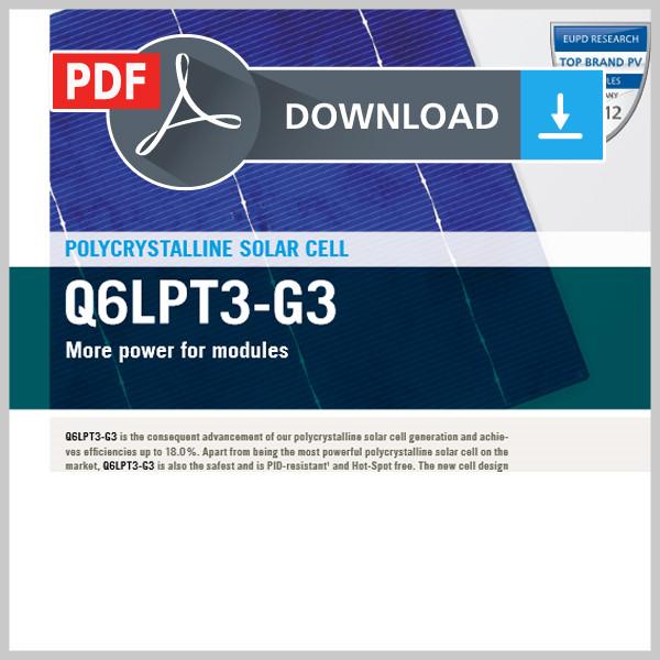 Data Sheet Q6LPT3-G3